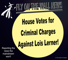 House Votes for Criminal Charges for Lois Lerner! by IAmTheUnison