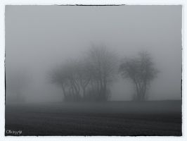 misty land by Weissglut