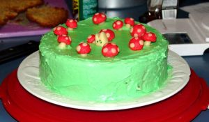Fairy Ring Cake by cloudsnapper