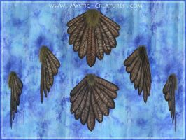 Eagle Feathers - The birdy part of a gryphon tail. by Mystic-Creatures