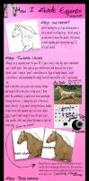 How Chelsea Shades Equines by pom-happy-my-dog