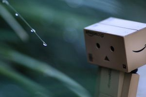 Contemplation of danbo by LPeregrinus