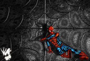 Spider-Man-Wallpaper by shadefalcon
