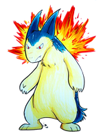 Student Typhlosion by raizy