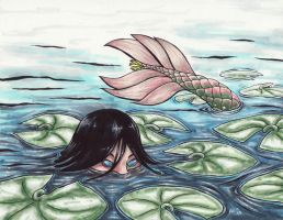 Lotus by thrivis