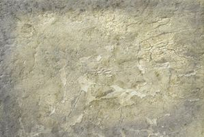 Texture 161 by deadcalm-stock