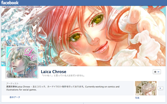 Facebook page by laichro