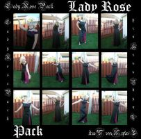 Lady Rose Pack by gsdark-stock