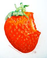 Strawberry II by Saphienna