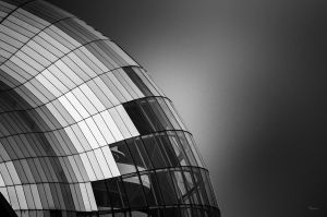 The Cocoon by Wayman