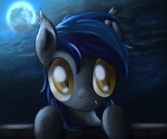 An Echo in the Night by Ardail