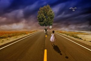 The Road Less Travelled by mindym306