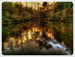 Dad's Pond in HDR by barefootphotos