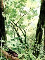 My Indonesian Forest by inikeke