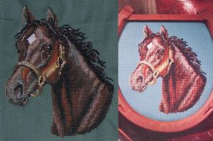 Arabian Bay -- Cross-stitch by wemustnotforget