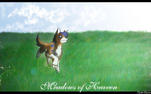 Meadows of Heaven by rymae