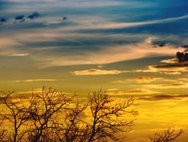 sky at the sunset by DianaLucifera