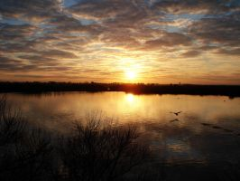 Sunset by Tinker-Bell33