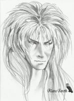 Jareth - pencil version by kiarajareth
