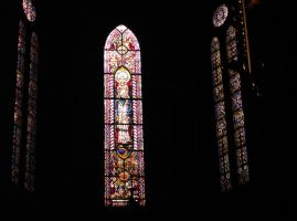 Siedlce -cathedral-Virgin Mary by kwizar
