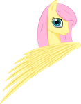 Fluttershy by UP1TER