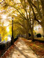 Autumn in Spain by cheese6623