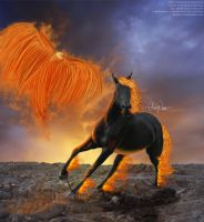Element: Fire by Vitani1