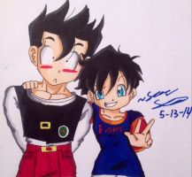 Gohan And Videl! :D by dbzultrafan312000