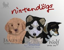 Nintendogs Family by DarkwolfUntamed
