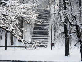 Stairway by Amatrice