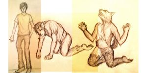 Werewolf Transformation Sequence by amirafox
