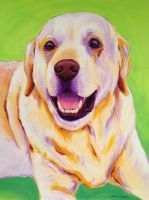 Yellow Lab on green by samtaylor5