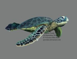 Turquoise Turtle by Verolise