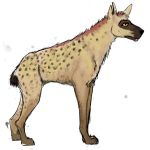 Male Hyena OC by SoBeyondCrazy