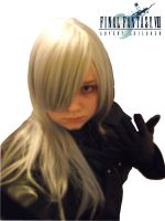 Final Fantasy Advent Children by FanGirl91193