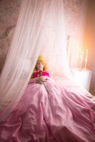 Sleeping Beauty - Princess Aurora by Dzikan