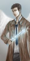 cover  Anthology SPN by shikakashi