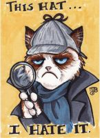 Grumpy Sherlock Cat by birdiebo