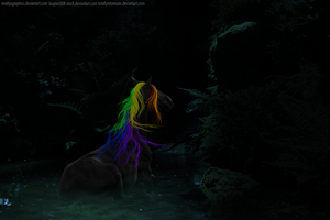Color in the Night by MiddysGraphics