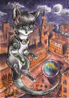 City night life - colours of harmony by Drerika