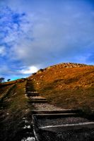 Climbing the Stairs of Success by Laurence-CE
