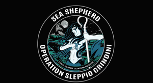 Operation Sleppid Grindini by 121199