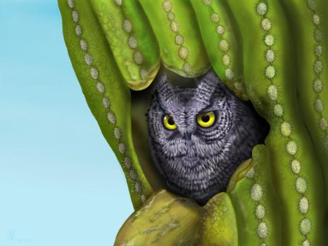 Desert owl hide in cactus (step by step final) by gusvader