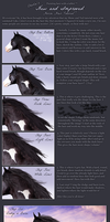 Horse Hair Tutorial by xxCHARLiE