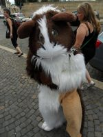 Connichi '12 - Guinea Pig by Moeker