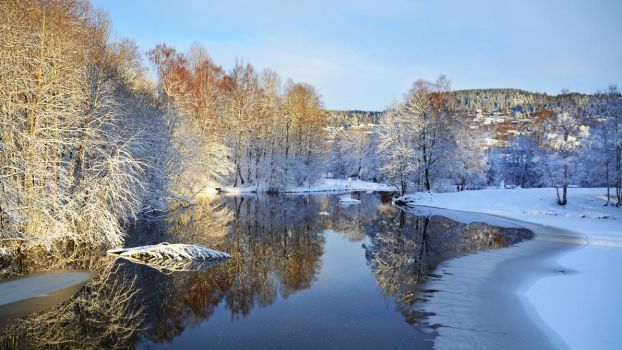 Winter reflections by francis1ari