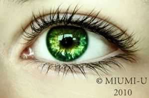 Lovely green by Miumi-U
