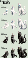 Adopt Cats -Domestic- by elen89