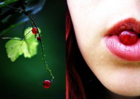 red currant by missHaslerka