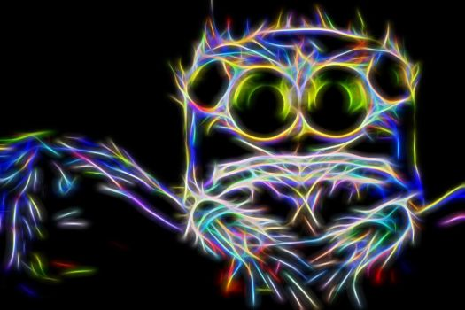 Neon Spider by Lord-Zeto